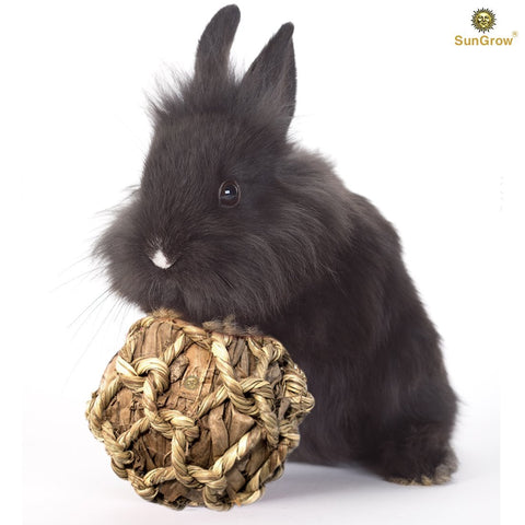 Natural Banana Leaf Ball for Rabbits