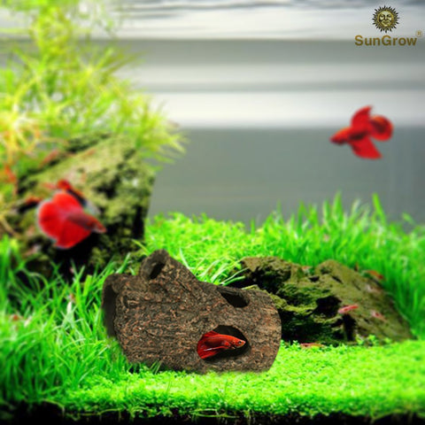 SunGrow Betta Log: Hollow log for fish to hide, play, sleep and breed: Natural look: Purifies water: Great for aquarium decoration with moss