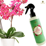 Orchid Spray Fertilizer - Plant Food Mist