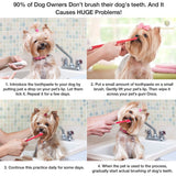 Beef-flavored Dog Toothpaste