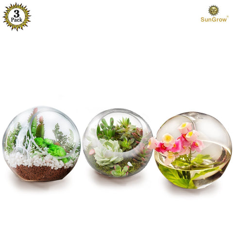 3 Tabletop Plant Containers - Creates Mini Glass Terrarium Garden