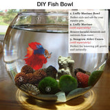 SunGrow Clear Bowl Aquarium, 1 Gallon, Classic Bowl for Bettas, Create Ideal Centerpieces for Weddings and Other Occasions, 360° View of Aquarium, Centerpiece, or Terrarium, Perfect for Office