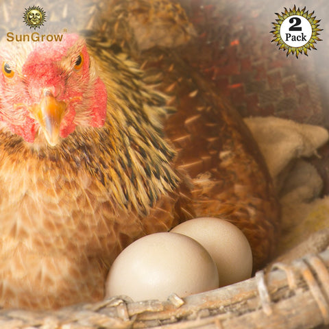 "2 Ceramic Chicken Eggs - Natural Looking 2.75"" (7cm) Nest Eggs"