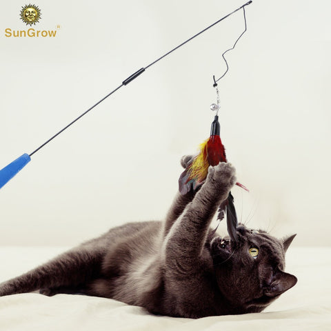 SunGrow Cat Toy - Interactive Wand