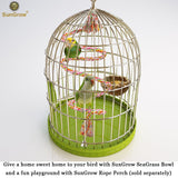 Natural Seagrass Nest for Birds