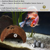10 Betta Mineral Balls --- Calcium-rich Tourmaline Balls for Perfect Nutrient Balance