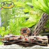 3 Cholla Wood Pieces for Shrimp - Thorn-Free 6""