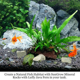 Mineral Rocks - Provides Calcium - Absorb Toxic Chemical & Stabilize pH in Water