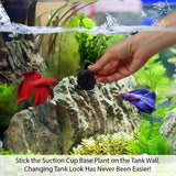 Tropical Live Aquarium Windelov Plant with Suction Cup