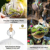10 DIY Jute hemp ropes for air plant orbs