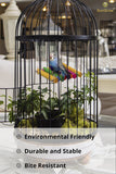 Colorful, Environmentally Friendly SunGrow Pet Bird Swing