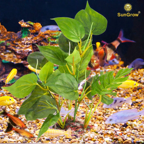 Anubias - Beautiful Plastic Aquarium Plant