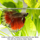 Betta Water Starter - Safe and Natural Water Conditioner