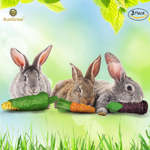 SunGrow Natural Veggie Chew Toys for Rabbits (3 pcs)