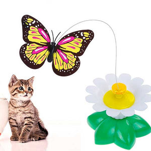 "Interactive ""Flying Butterfly"" Cat Toy - Blown Biker - 2"