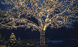 Image of Wexley Home Solar-Powered 100-LED White Fairy Lights