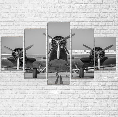 Face to Face to 3 Engine Old Airplane Printed Multiple Canvas Poster