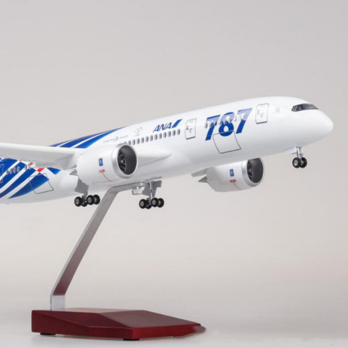 ANA Boeing 787 (Special Edition 47CM) Airplane Model