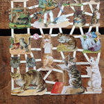 German Scraps - Funny Cats - Die Cuts, Cut Outs, Vintage Style, Vintage Inspired, Paper Ephemera, Reproduction, Cat Scrapbooking Paper