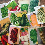 Vintage French Vegetable Labels - Random Set of 10 - Vintage Labels, NOS Labels, Junk Journal, Paper Ephemera, Altered Art, Craft Supplies