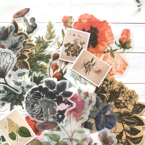 Flower Stickers - Set of 25 - Nature Stickers, Junk Journal Paper Ephemera, Planner Supplies, Craft Supplies, Nature Ephemera, Plants