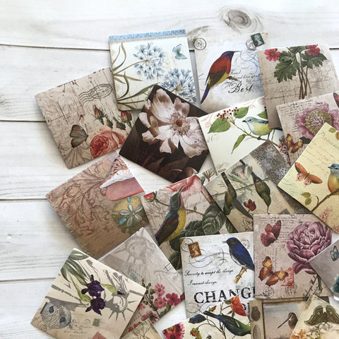 Nature Stickers - Set of 40 - Bird Labels, Junk Journal Paper Ephemera, Planner Supplies, Craft Supplies, Nature Ephemera, Flower Stickers