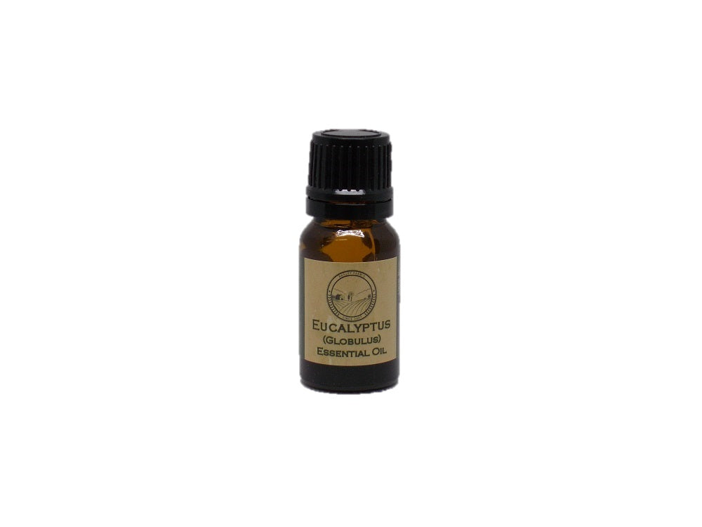 Eucalyptus Globulus (China)  Essential Oil  10 ml