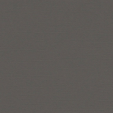Canvas Cardstock: Cloak Gray