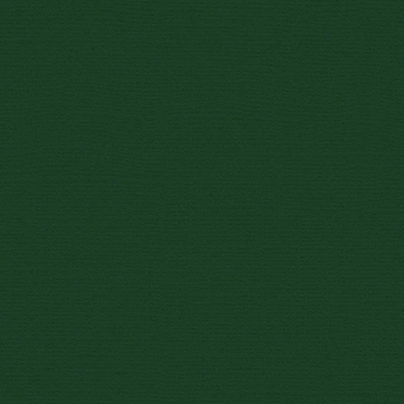 Canvas Cardstock: Evergreen