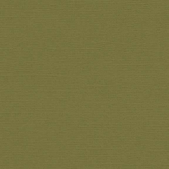 My Colors Canvas Cardstock: Grasshopper