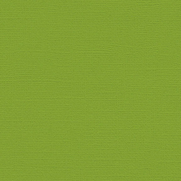 My Colors Canvas Cardstock: Mint Julep
