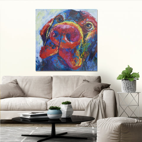 Canvas Print of 'Labrador'