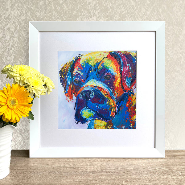 Framed Print - Boxer Dog