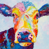 Canvas Print of Clover Cow
