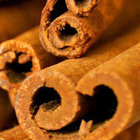 Essential Oil of Cinnamon - Creole Secret Therapeutic Aromatherapy