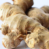 Essential Oil of Ginger - Creole Secret Therapeutic Aromatherapy