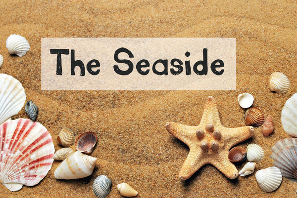 The Seaside Discovery Box