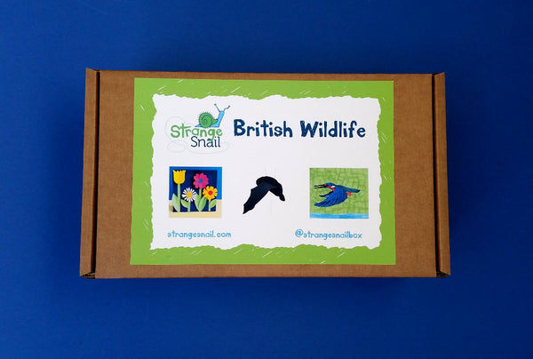 British Wildlife Discovery Box