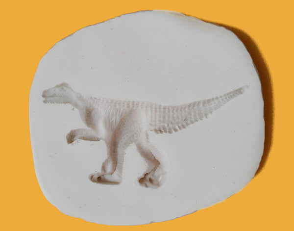 Dinosaurs Discovery Box