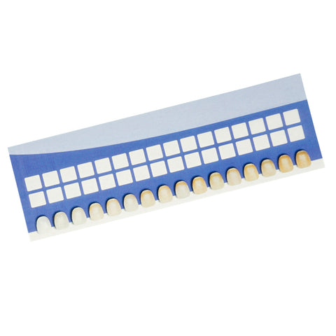 Disposable Paper Tooth Shade Chart - TheWhiteningStore.com