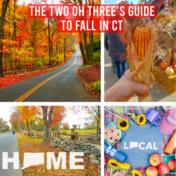 #FallingForThe203 : The 203's Guide to Fall in Connecticut