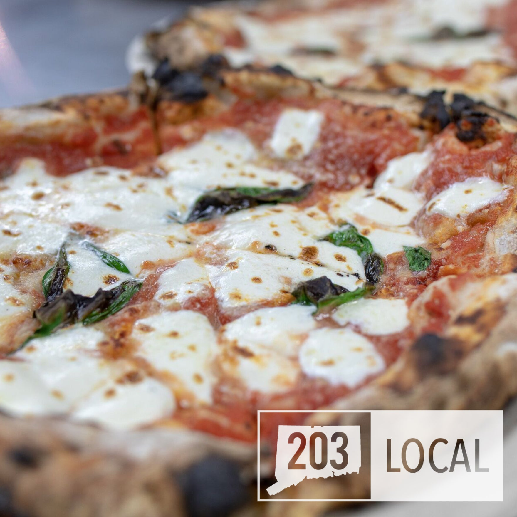 8 Best Pizza Joints in CT -- The 203 takes on National Pizza Day!