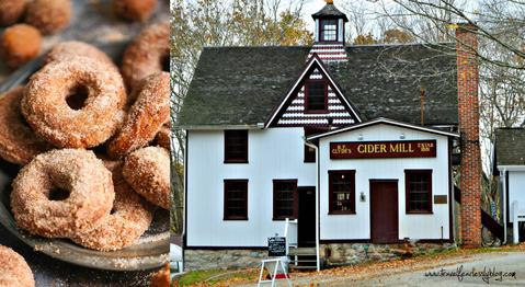 The203 guide to fall in CT_ Clydes cider Mill