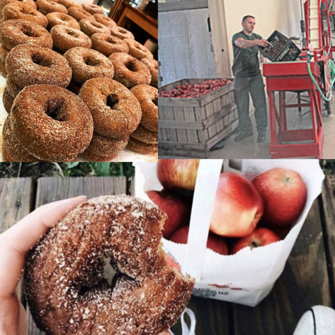 Beardsley Cider Mill - The 203's Fave Cider Mills in CT
