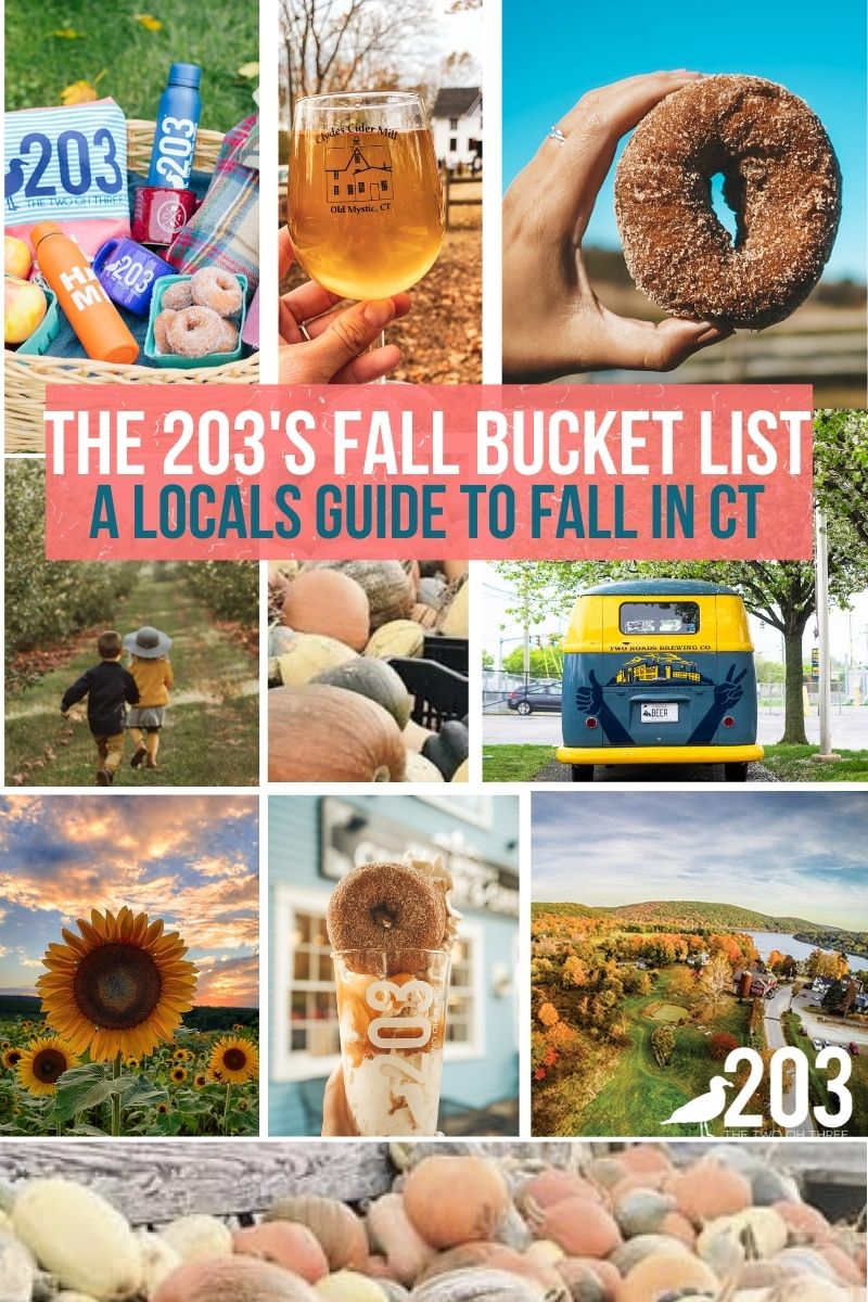 Fall Activities in Connecticut