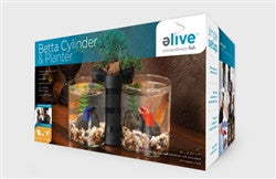 Elive Betta Cylinder and planter Black