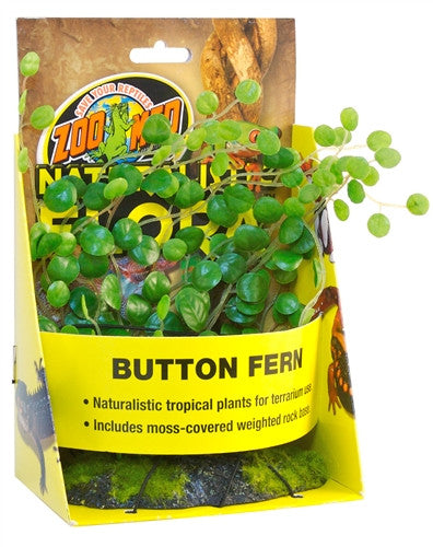 Zoo Med Button Fern