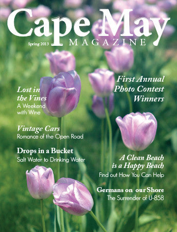 Cape May Magazine Back Issues – Page 3