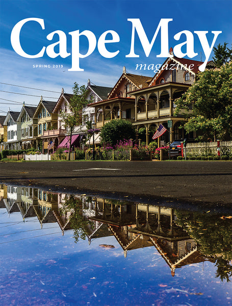 Spring 2019 issue - Cover photograph of Stockton Row Houses by Martin Garvalov