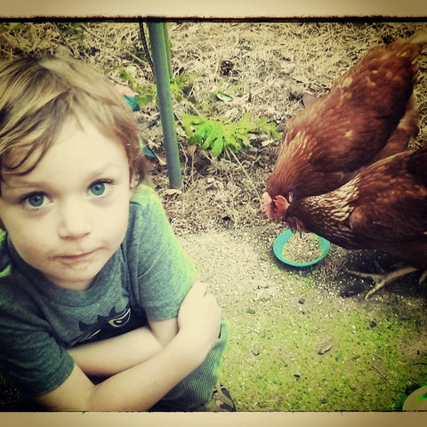 Logan with Chickens large